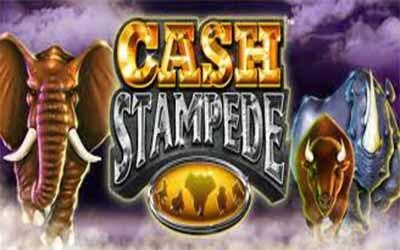 tragaperras Cash Stampede