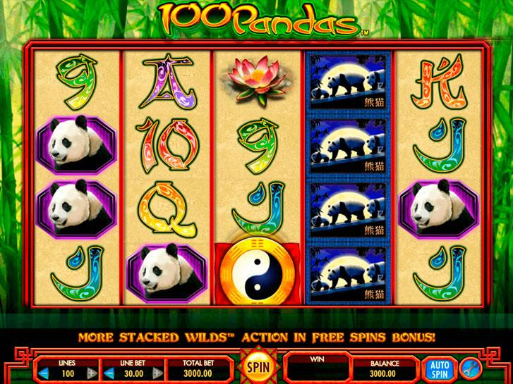 100 pandas iframe
